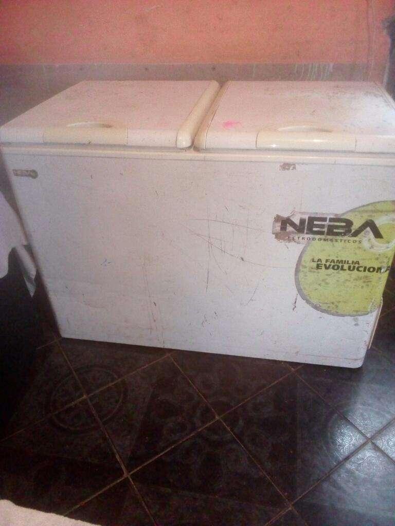 Frizer Neba 384lt