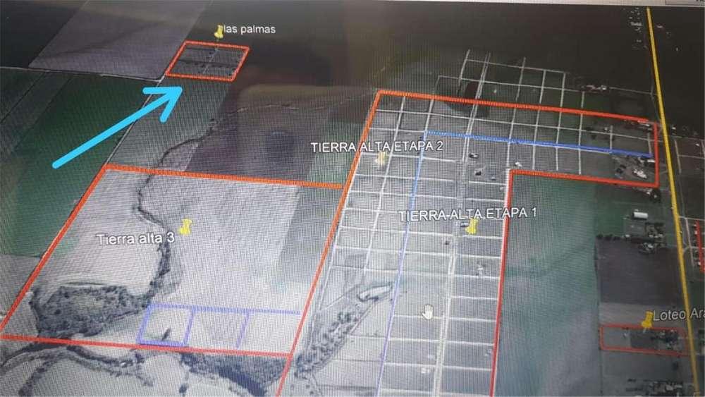 Colonia Ensayo S/N - 220.000 - Terreno en Venta