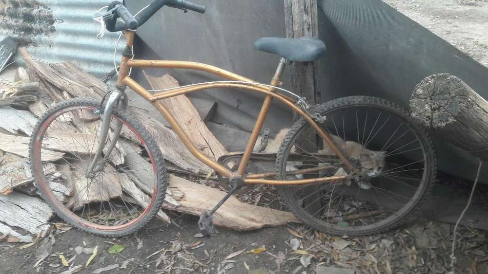 Vendo Bici Playera de Hombre,