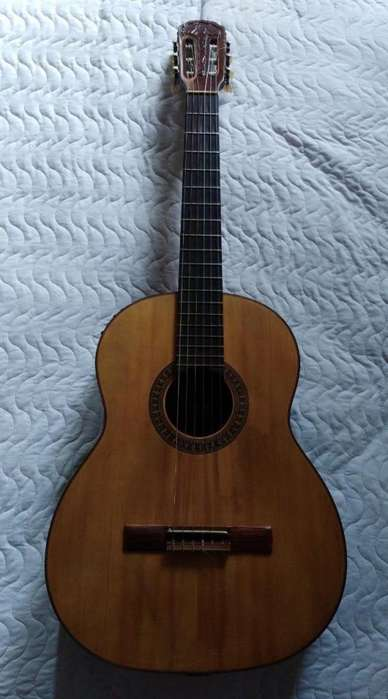 Guitarra Electroacustica Giannini Brasil