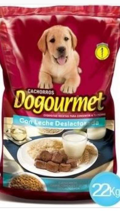 Dogourmet Cachorros X 22 Kls