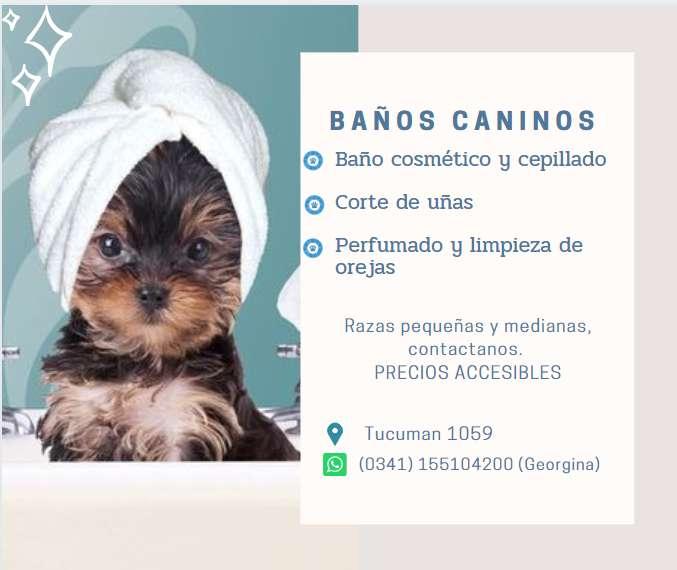 Baños caninos
