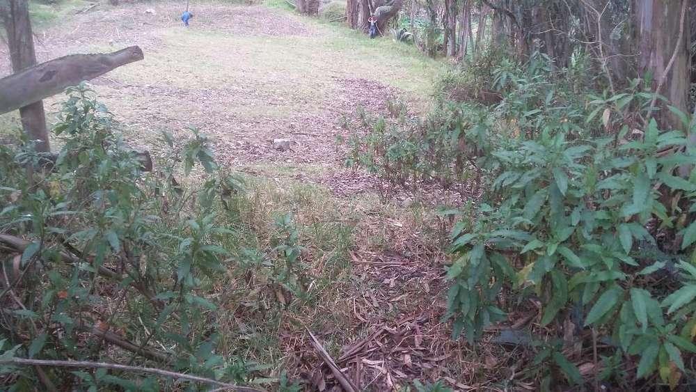 Se Vende Este Terreno en Chabay bajo