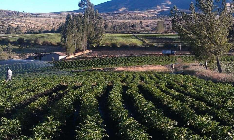 Se vende 6.92 Hectarias ,Carchi,Bolivar