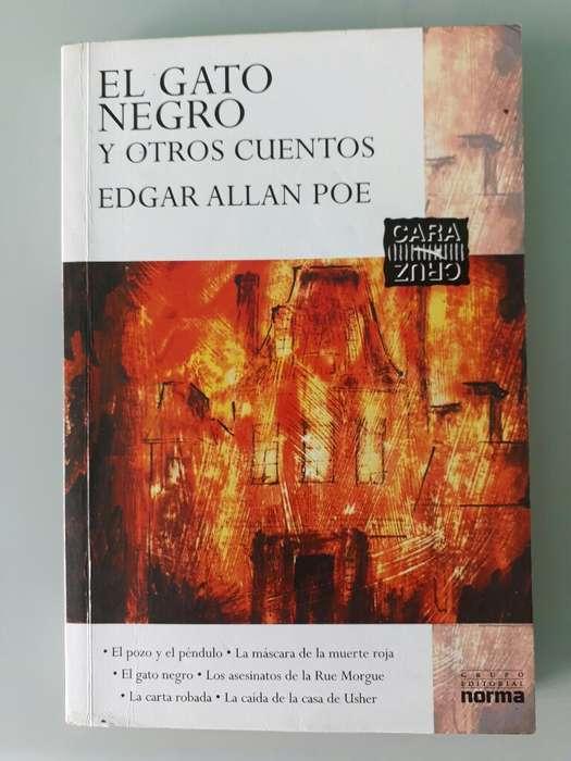 El Gato Negro Y Otros Cuentos, Alan Poe