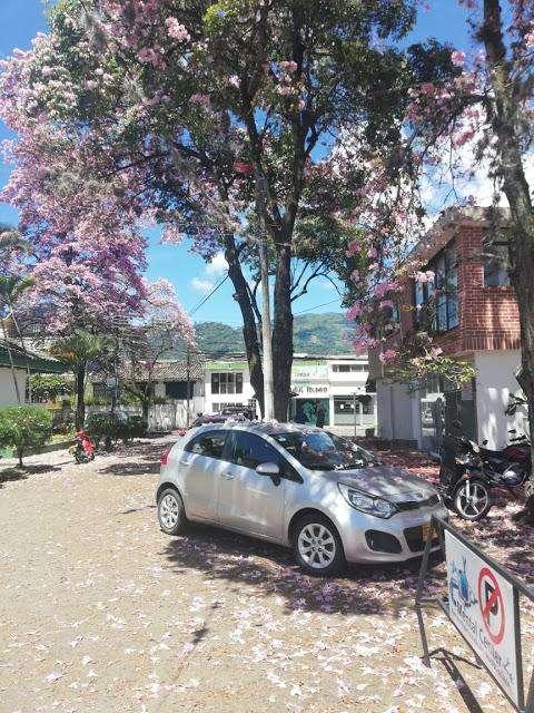 VENTA DE LOCALES EN CADIZ IBAGUE IBAGUE 6731089