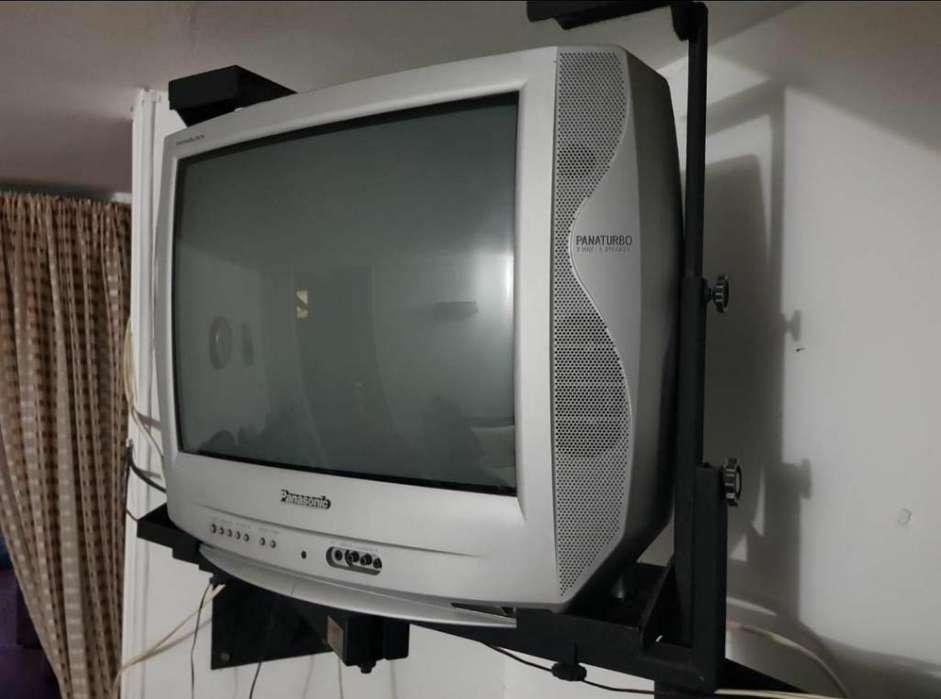 Vendo Tv29 Panasonic