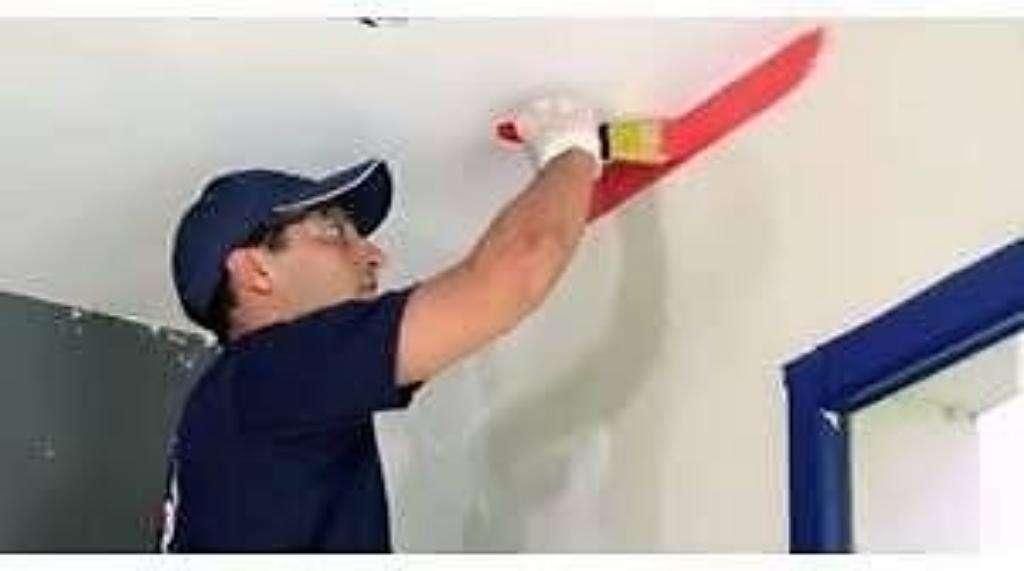Pintor Profesional.economico