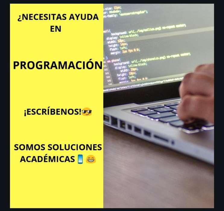 Brindo Servicio de Programación