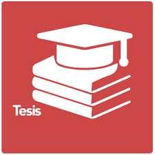 Asesoría En La Elaboración De Ensayos Y Tesis, Pre-postgrado