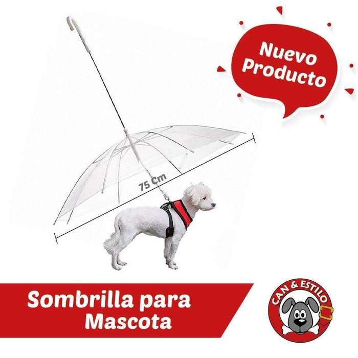 Sombrilla para Mascotas