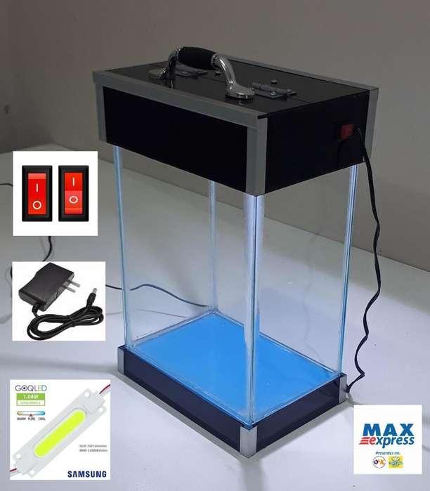 MINI Acuario Pecera 5.9 Litros TAPA/BASE Acrílico Luz LED Delivery