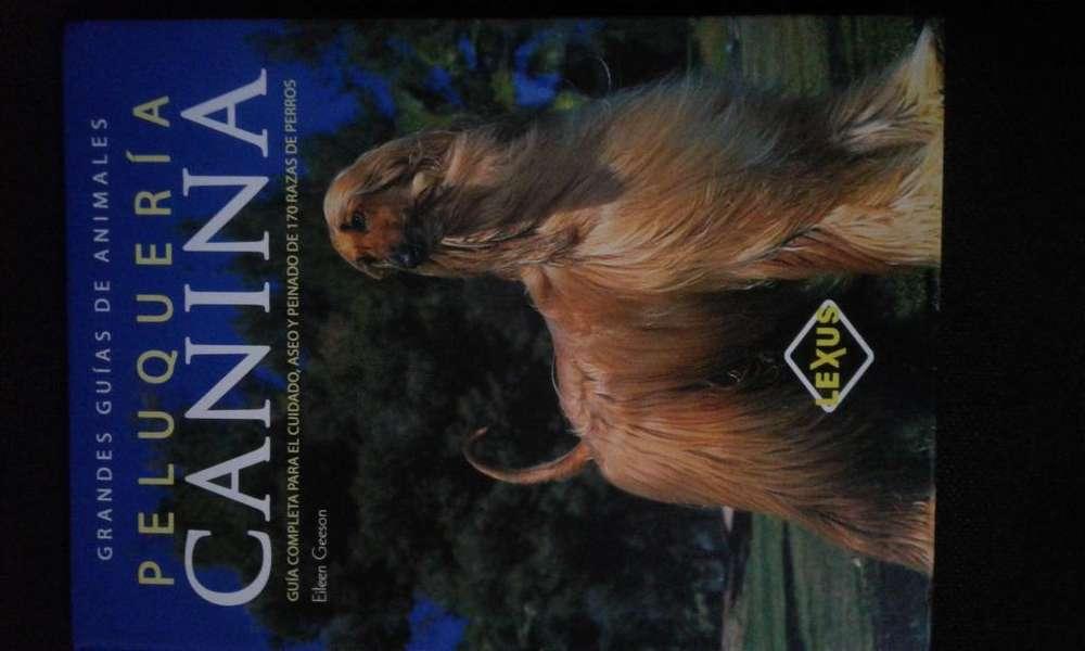 Peluqueria Canina 170 Razas