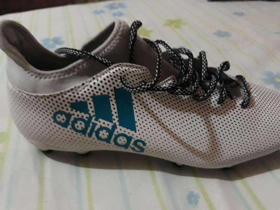 Chimpun Adidas