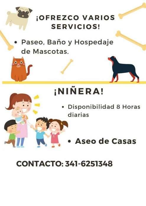 Niñera, Limpio Casa, Paseo Perros