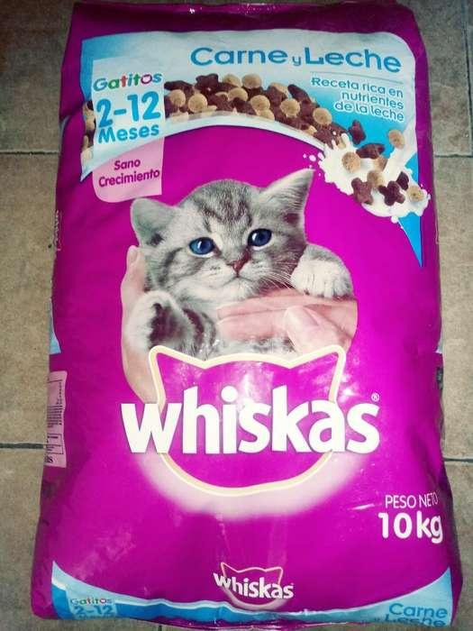 Whiskas Gatitos X 10kg