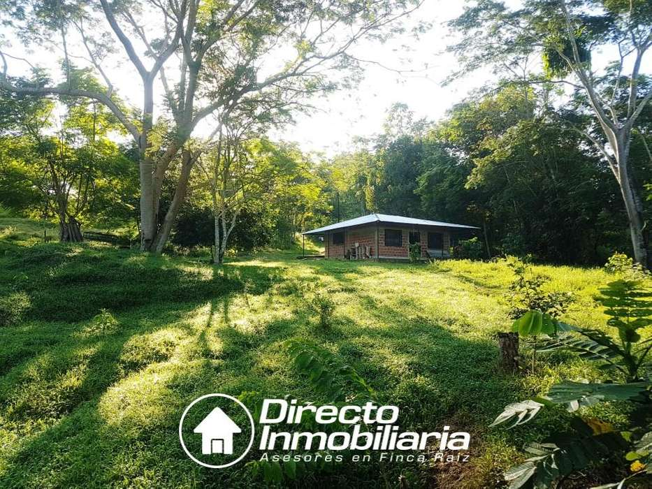 SE VENDE finca de 12,9 hectáreas en Sabana de Torres, stder