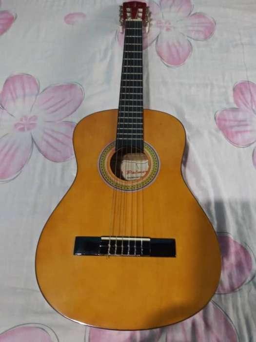 Guitarra Acústica Marca Palmer Nueva
