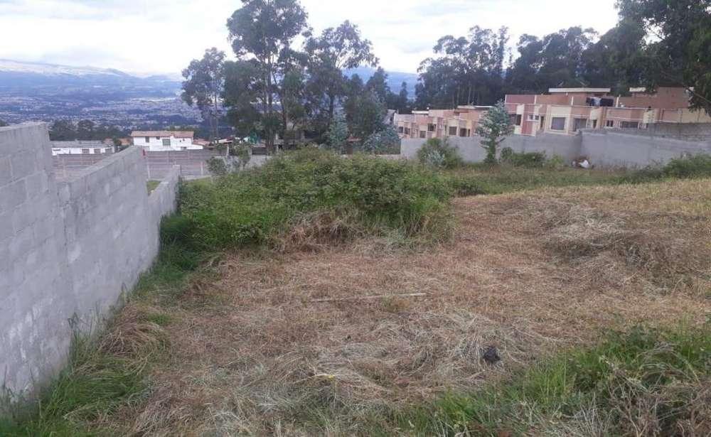 San José de Conocoto, terreno de venta, 1.000 m2