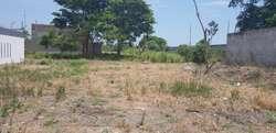 Terreno en Machala 300mts Via Pajonal