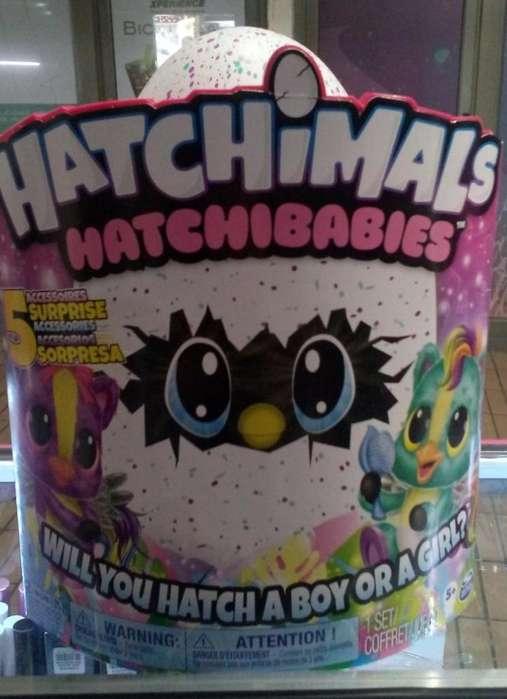 PROMCION Hatchmals Mascota