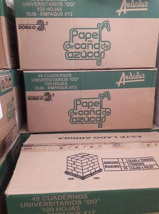Caja de cuadernos Norma 100h Cuadros (Diseño solo Mujeres)