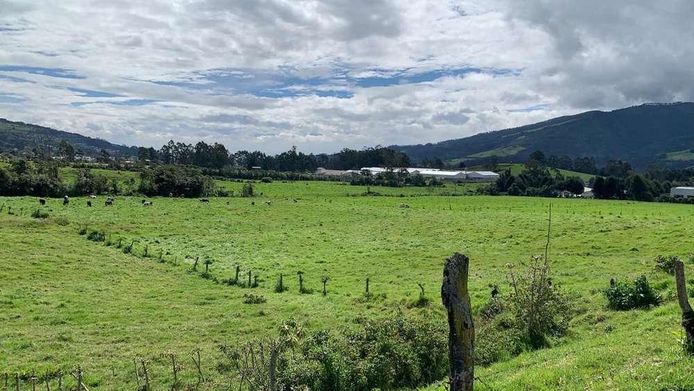 Venta Terreno Industrial 16.000m2 - Pozo de Agua - Tambillo