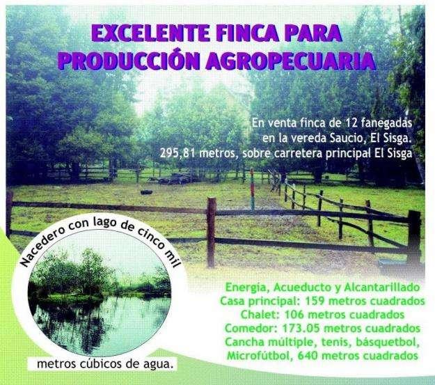 Venta Finca Choconta, El Sisga 12 Fanegadas excelente, en producción