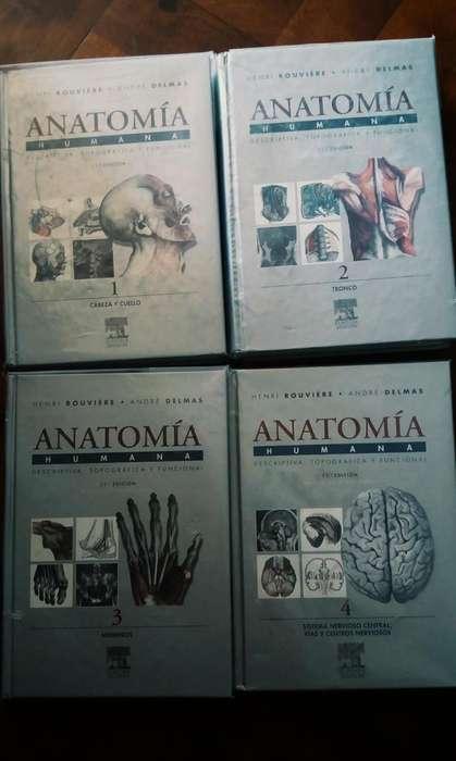 Anatomia humana ROUVIERE