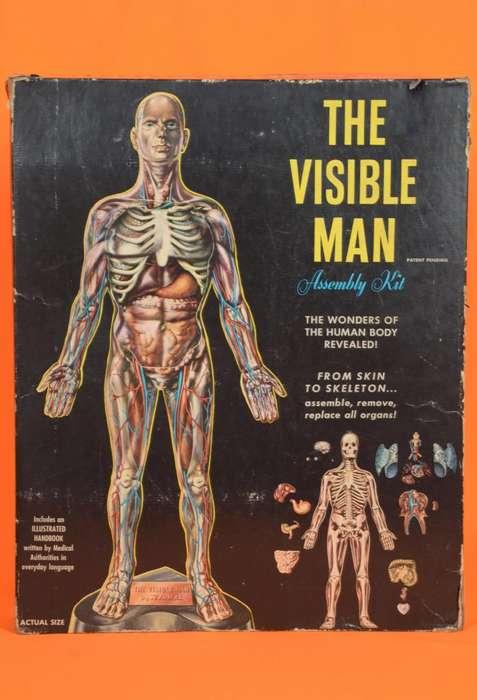 El Hombre Visible / Anatomía Humana / 1959 / Coleccionable