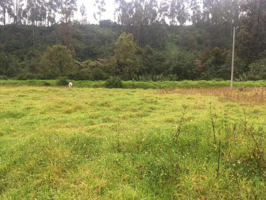 Terreno en Urbanización, Cashapamba. El colibri, Valle de los Chillos