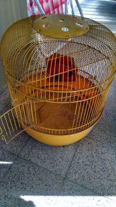 Jaula para <strong>hamster</strong> o canarios con accesorios marca Marchioro made in italy 1.000