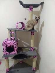 Gimnasio Rascador Para Gato Obsequio Juguete!!