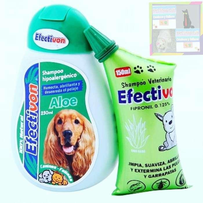 Efectivon Shampoo Áloe Cojín