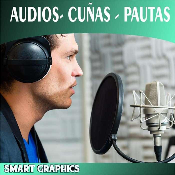 AUDIOS PARA PERIFONEO CUÑAS PAUTAS COMERCIALES VOZ BTL PUBLICIDAD AUDITIVA PALMIRA CALI VOLANTEO