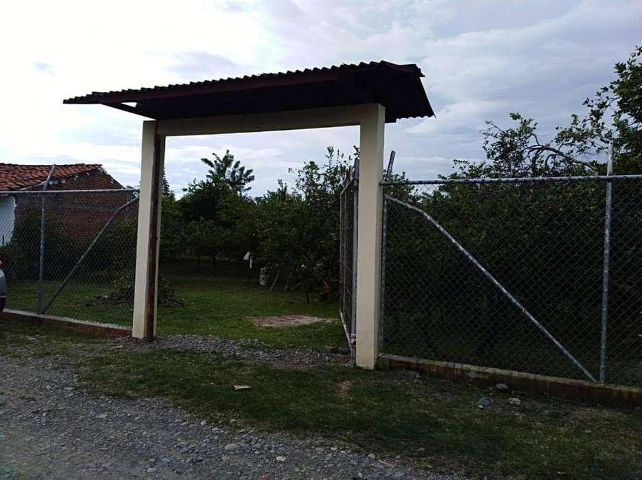 <strong>campo</strong> ALEGRE ANDALUCIA, VENTA DE GRAN LOTE