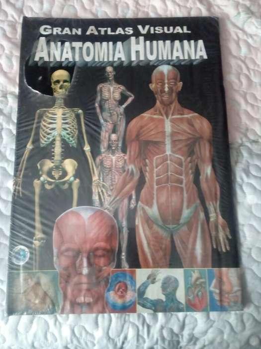 Gran Atlas Visual Anatomia Humana