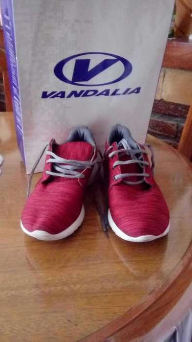 Zapatillas Vandalia