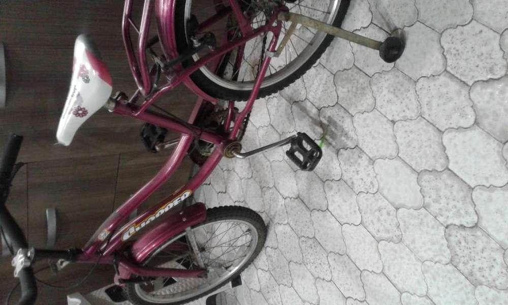 Bicicleta rodado 20 ex estado