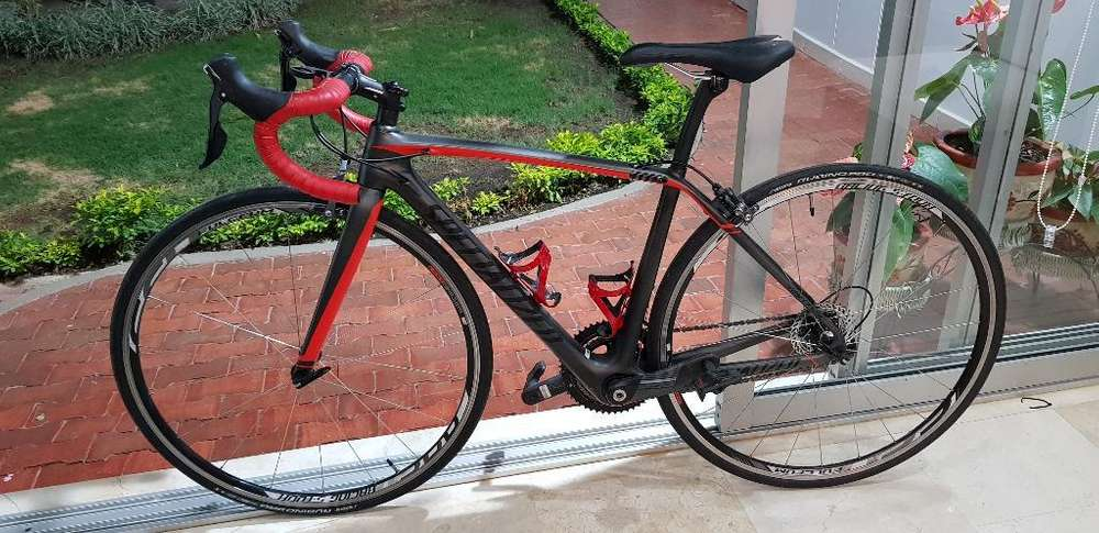 Bicicleta Carbono Carretera Specialized
