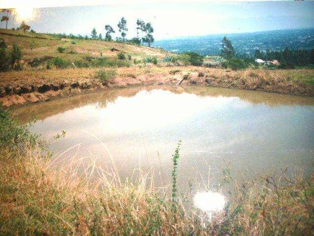 Venta de Terreno Tumbaco, sector colegio Papachamama