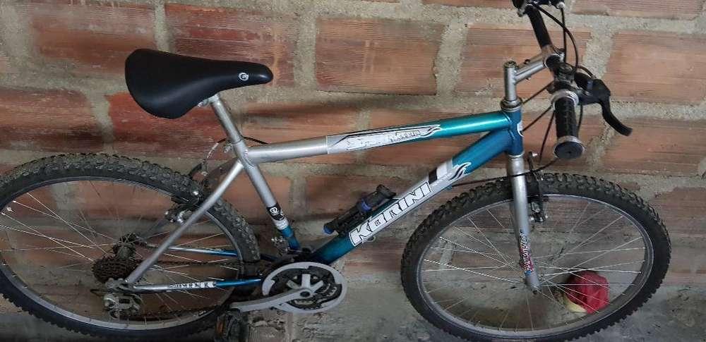Bicicleta Toterreno