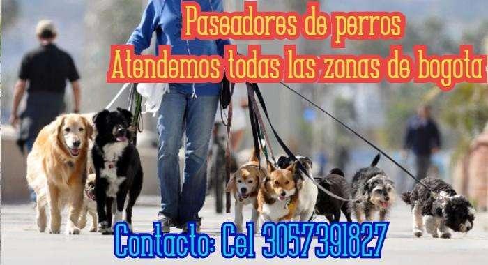 Paseadores de mascotas Cel 3057391827 Atendemos todo bogota