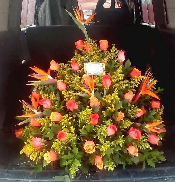 Flores Bogotá Servicios Bogotá P 3