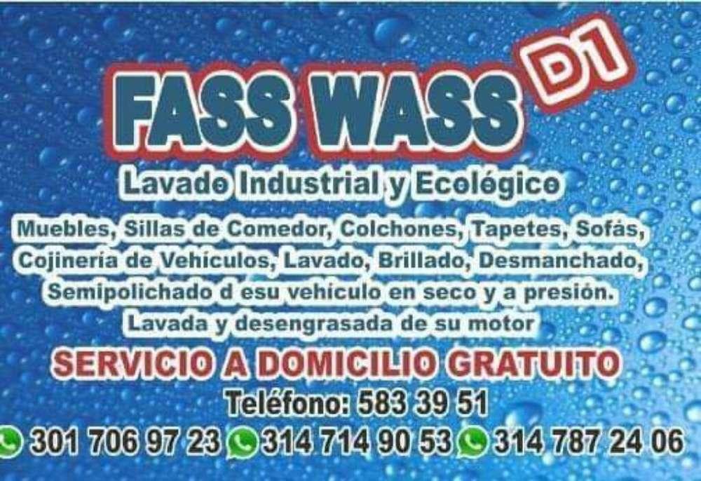 Fass Wass D1 Lavado de Colchones Salas..