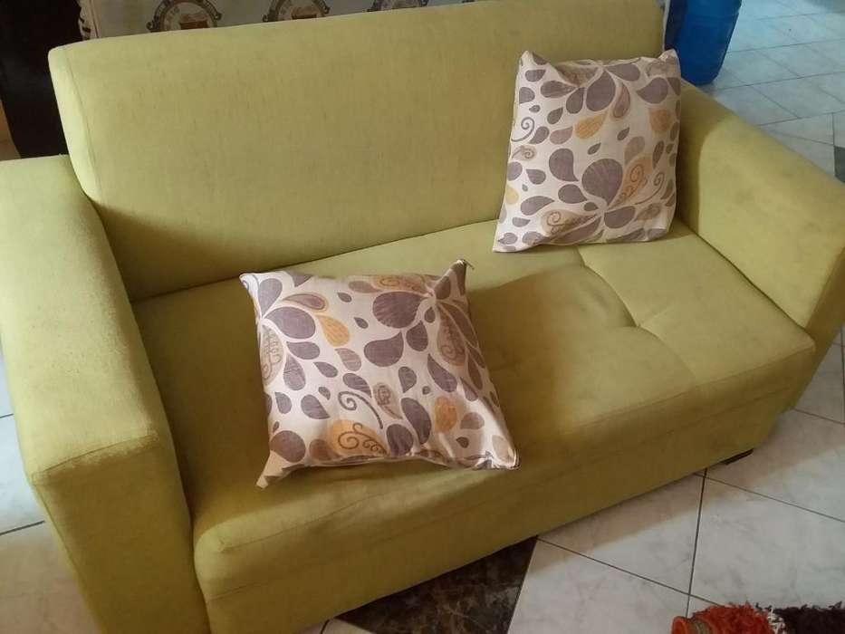 Se Vende Sofá con Dos Cojines