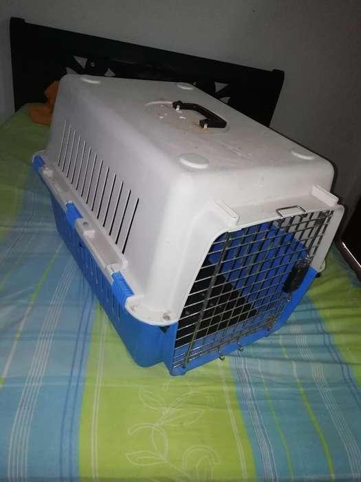 Guacal - Jaula para Mascotas