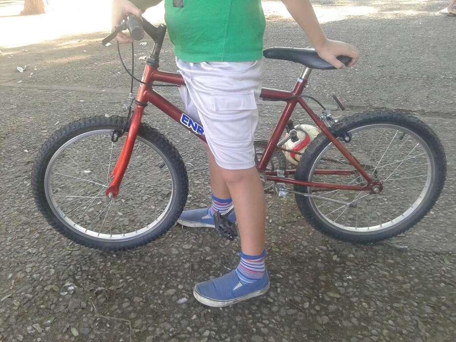 Bicicleta Enrique Rodado 20