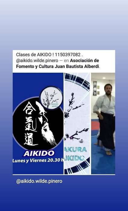 Aikido en Wilde