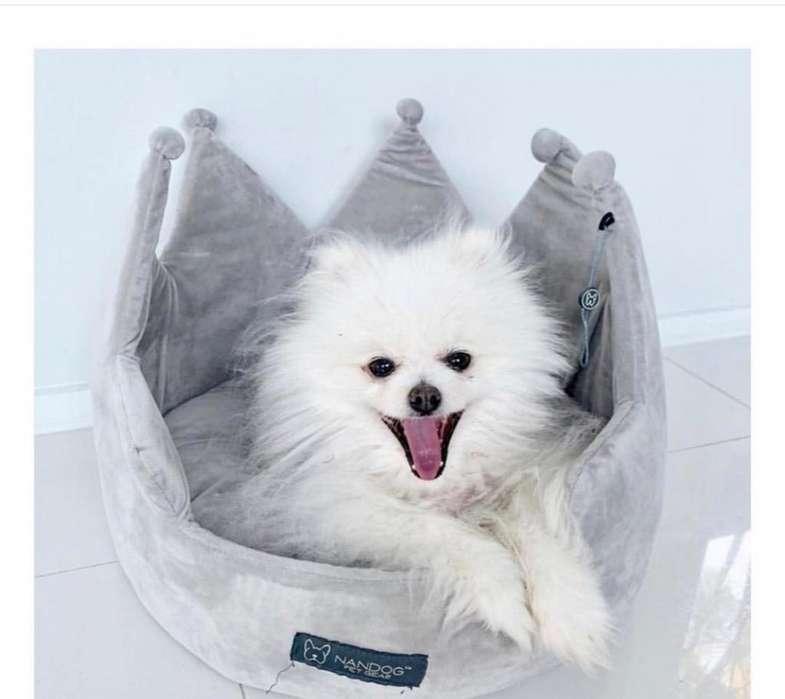 Cama Nandog para Perro Pequeño